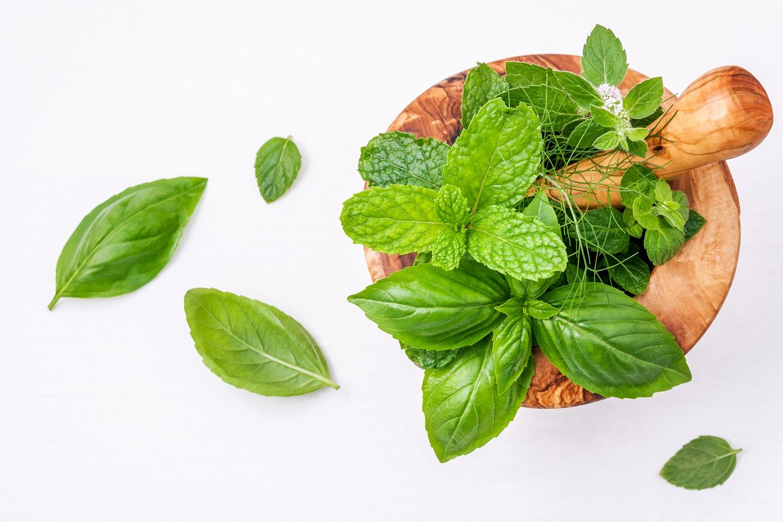 Alternative medicine fresh herbs in the wooden mortar set up on
