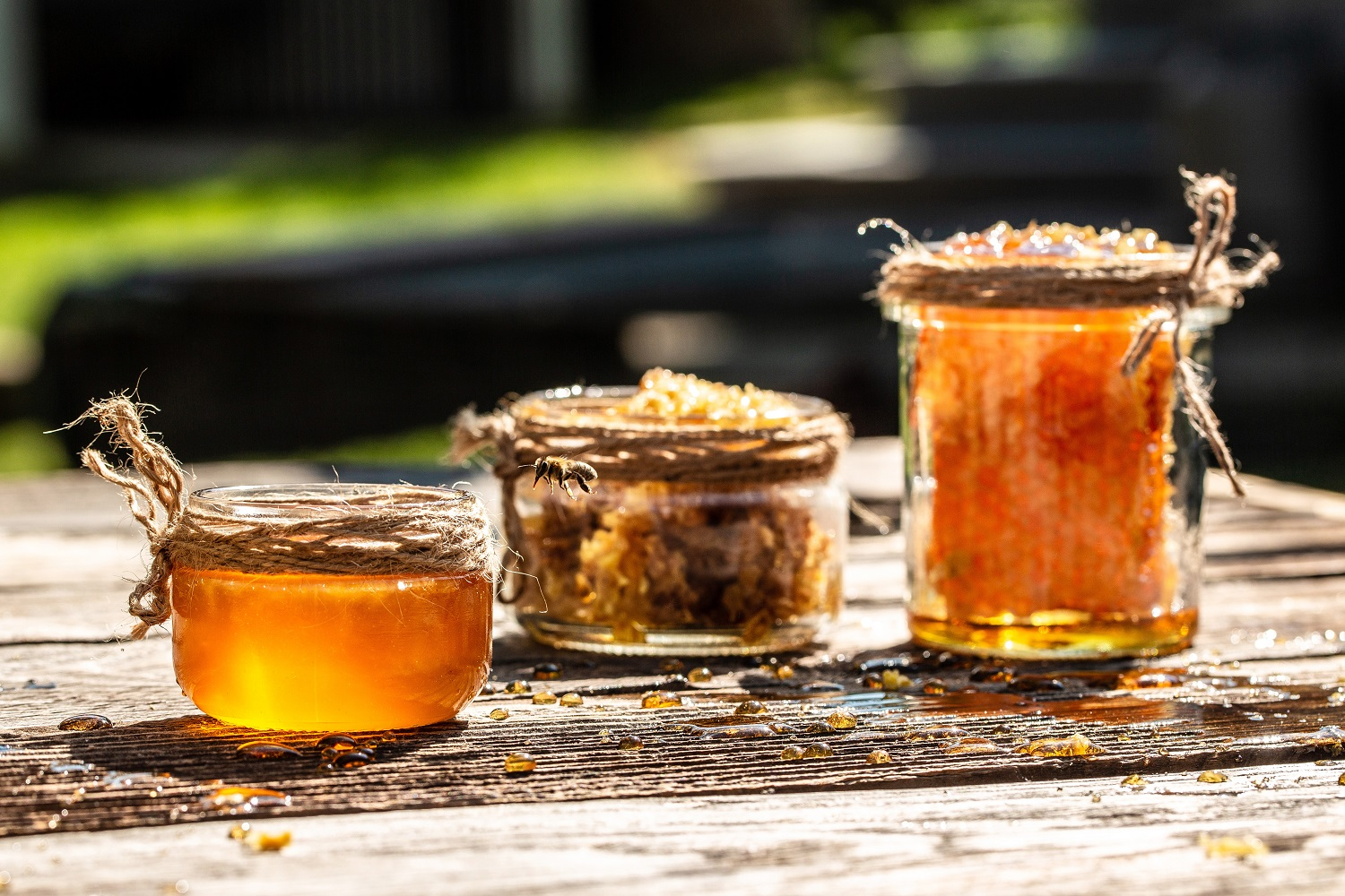 Honey in glass jar with bee flying on wooden table on background honeycombs with full cells of honey. organic natural ingredients concept. banner, menu, recipe, place for text